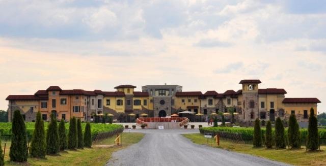 Colaneri - winery_1