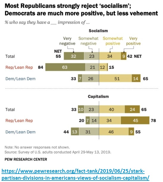 Partisan support of capitalism and socialism